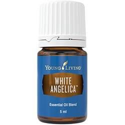 white-angelica
